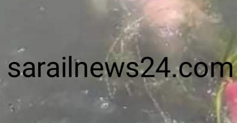 1598433565834